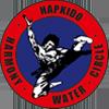 Krakowska Szkoła Hapkido